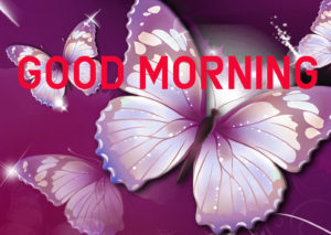 Latest HD Good Morning Images Wallpaper Pic