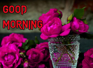 Happy Good Morning Images picture photo for friend