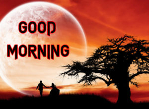 Happy Good Morning Images  photo download