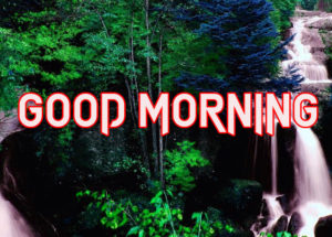 Happy Good Morning Images pictures for whatsapp
