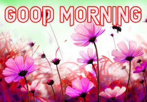 Happy Good Morning Images  picture download