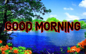 Happy Good Morning Images photo for friend