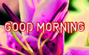 Happy Good Morning Images pics for girlfriend