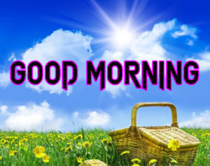 Happy Good Morning Imagespicture for whatsapp