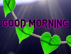 Happy Good Morning Images  wallpaper photo download