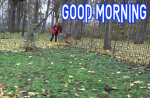good Morning Images wallpaper photo for friend