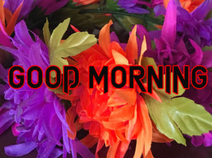 good Morning Images photo pics for facebook