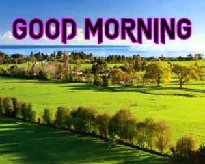 New Good Morning Images  wallpaper photo for friend