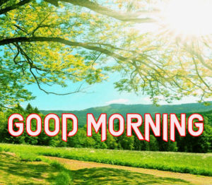 New Good Morning Images photo pics for facebook