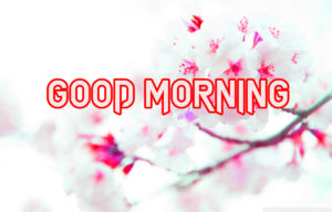 New Good Morning Images pics photo for friend