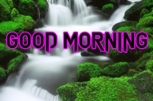 New Good Morning Images picture wallpaper download