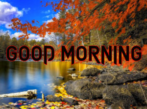 New Good Morning Images wallpaper download & share