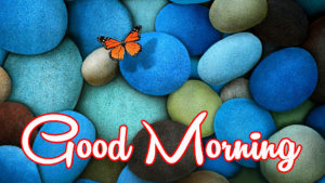 New Good Morning Images pics wallpaper photo free hd