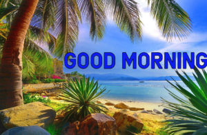 Good Morning Images Photo Download In HD