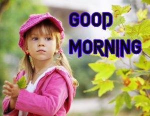 Good Morning Images Pics Wallpaper Nature Lover