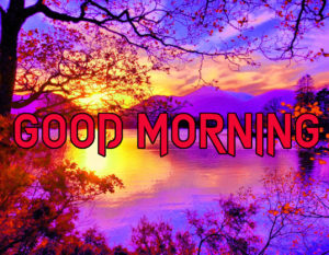 Happy Good Morning Images wallpaper pics for whatsapp