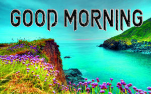 Latest Free Good Morning Wishes Images Photo With Nature