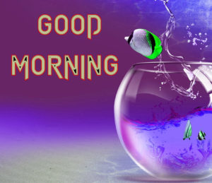 Latest Free Good Morning Wishes Images Pictures Pics Download