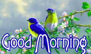 Good Morning Images Pics With Animal Lover Free for Whatsapp