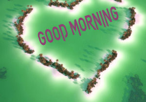 Latest Free Good Morning Wishes Images Wallpaper Pics for Facebook