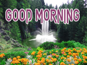 Latest Free Good Morning Wishes Images Wallpaper Pics Free
