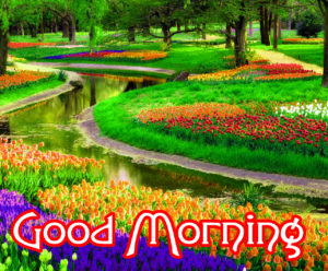 Good Morning Wishes Pics Wallpaper Free For Facebook