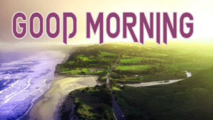 Latest Free Good Morning Wishes Images Photo Pics Free Download