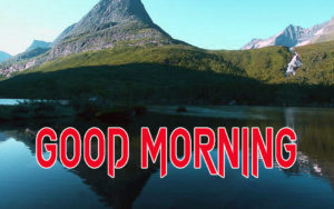 Latest Free Good Morning Wishes Images Pic Download & Share