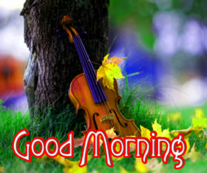 Good Morning Wishes Pics Wallpaper Pics for Whatsapp