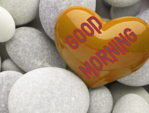 Latest Free Good Morning Wishes Images Wallpaper Free Download
