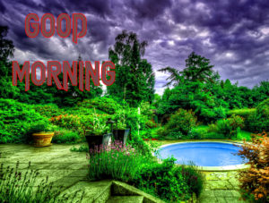 Latest Free Good Morning Wishes Images Photo Download