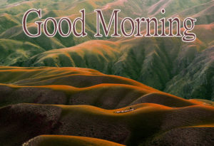 Latest Free Good Morning Wishes Images Wallpaper Pics