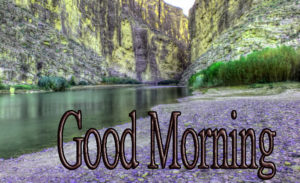 Latest Free Good Morning Wishes Images Pics HD Download & Share