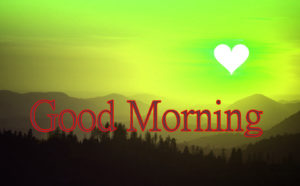 Latest Free Good Morning Wishes Images Wallpaper Free New
