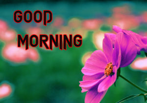 Sister Good Morning Images  picture for facebook