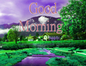 Latest Free Good Morning Wishes Images Pics Wallpaper Free