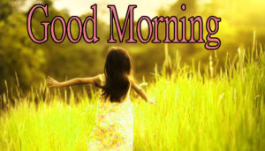 Latest Free Good Morning Wishes Images Photo Pics Download