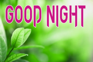 Good Night Photo HD Images Wallpaper for Facebook