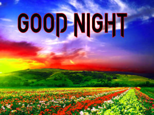 Good Night Photo HD Images Wallpaper Download