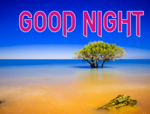 Good Night Photo HD Images Pictures for Facebook
