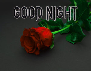 Good Night Photo HD Images Pic With Rose