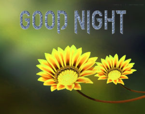 Good Night Photo HD Images Wallpaper Pics for friend