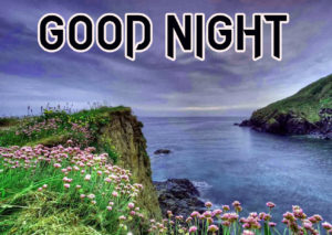 Good Night Photo HD Images Photo for Whatsapp