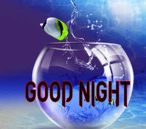 Good Night Photo HD Images Photo Download