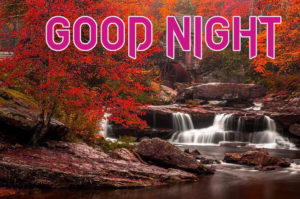 Good Night Photo HD Images Pics Free