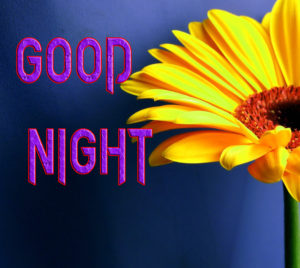 Good Night Photo HD Images Photo for Facebook