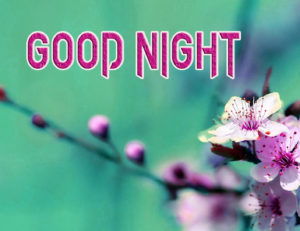 Good Night Photo HD Images Pics Pictures Download