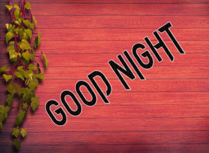 Good Night Photo HD Images Pics Wallpaper Free