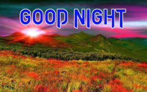 Good Night Photo HD Images Pics Wallpaper For Facebook
