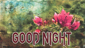 Good Night Photo HD Images Pics Wallpaper Free for facebook